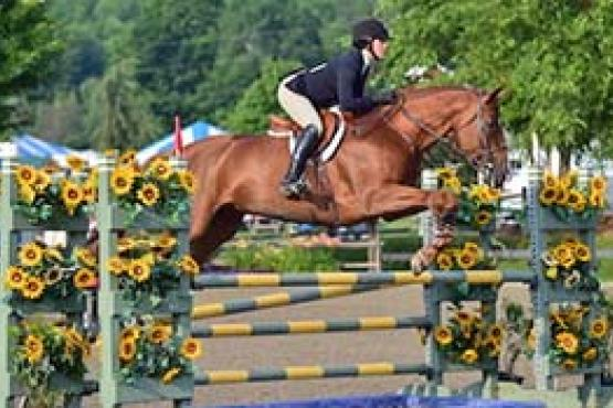 Elizabeth Ekberg and her mount Finnegan take advantage of the many equitation offerings at the 2015 Vermont Summer Festival. (Photo: David Mullinix Photography)