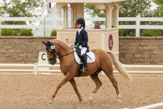 Ellanor Boehning and Kabam, USDF Region 2 Dressage Championships 2016