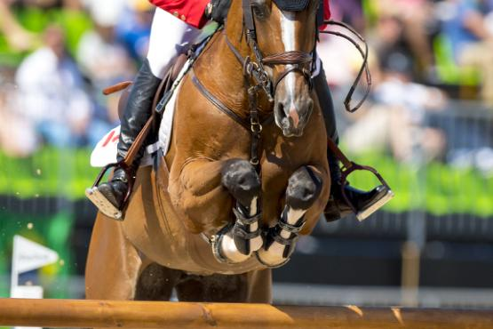 Eric Lamaze (CAN) and Fine Lady 5