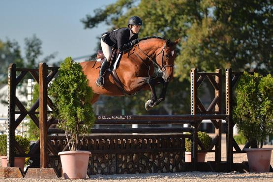 Gulino and Cappello compete in both the Junior Hunters and the Equitation divisions.