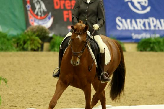 Julie McCrady won the Third Level Freestyle Adult Amateur Championship with her home-bred Hanoverian mare Remanessa.