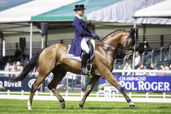 Olympic champion and FEI Classics™ series leader Michael Jung (GER) leads after the first day of dressage with La Biosthetique Sam FBW at the Land Rover Burghley Horse Trials, sixth and final leg of the FEI Classics™ series.