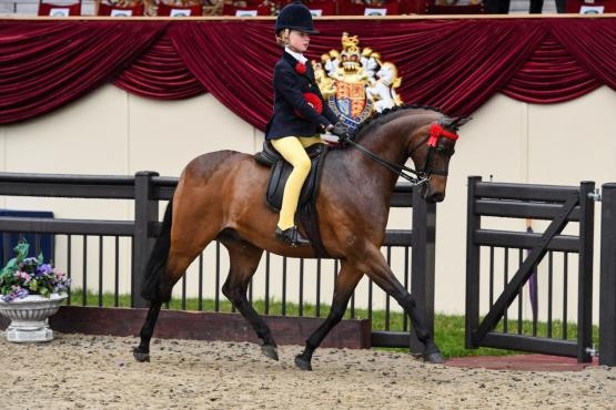India Till and Rotherwood Rainmaker landed the coveted Martin Collins Enterprises Show Pony Championship title at the Royal Windsor Horse Show.
