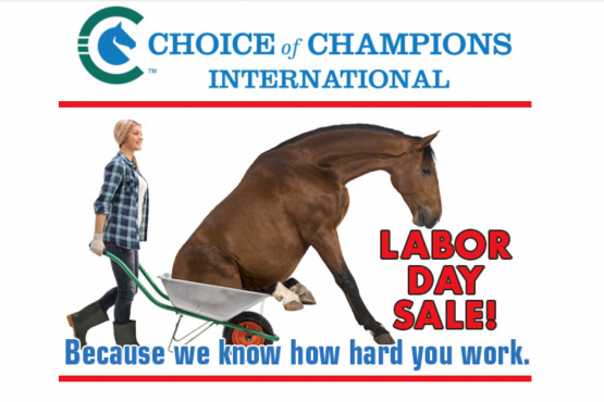Choice of Champions Sale