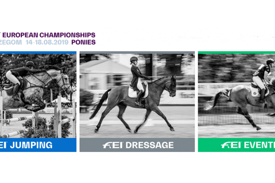 FEI European Championships for Ponies 2109