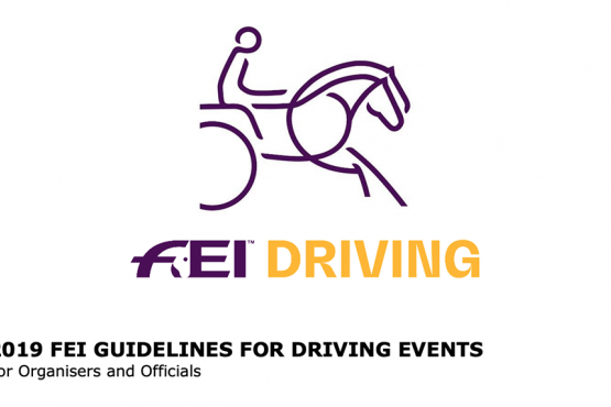 FEI Guidelines for Driving Events