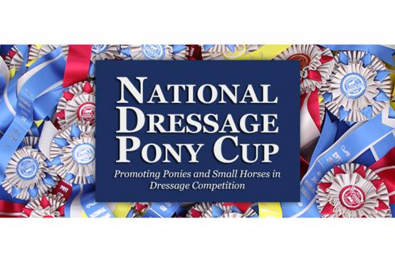 Dressage Pony Cup