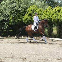 Uphill Canter
