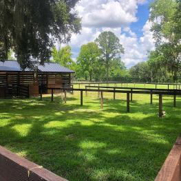 Barn Back_a_12344 SE 47th Ave., Belleview, FL 34420