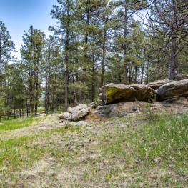 22_Natural Surroundings_21017 Eagle Feather Ln_Elbert_CO_80106