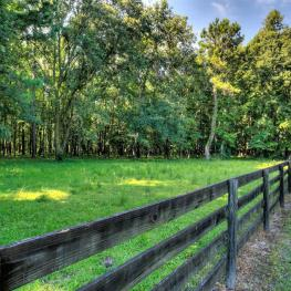 26_Field_20060 NW 125th Ave._Micanopy, FL 32667