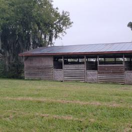 14. Barn #2_b_1001 NE 105th Ln_Anthony_FL_32617