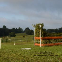 Fence 3 and 4: Double Brush Oxer(Photo: © Diana De Rosa)