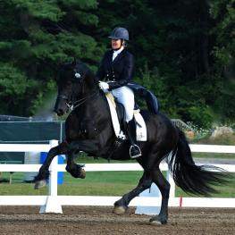 Friesian stallion, Thys shows off the canter that helped him win the High Score FEI at the Vermont Dressage Days show with trainer, Liz Austin.  (photo credit Betsy Nye)