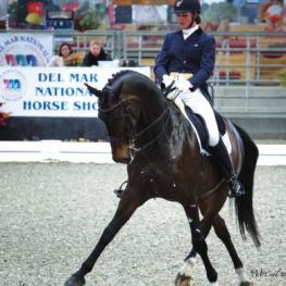 Olympian, Adrienne Lyle, competing with her horse Wizard, at the Del Mar National Horse Show