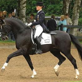 Theresa Wahler aboard the Hanoverian stallion De Niro