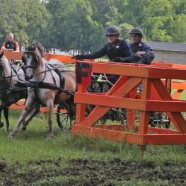 Bram Chardon times Mary Phelps and her pony pair going through the obstacles.