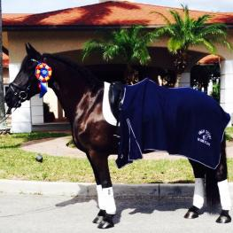 Ebony, ridden by Janine Little and owned by Shawneen Jacobs, earned the Horse of Course High Score Award at the Adequan Global Dressage Festival earlier this season.  The mare is one of several young horses Little is developing, all of whom are achieving excellent results. (Photo credit: Janine Little)