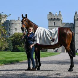 Her Majesty The Queen's homebred Champion, Barbers Shop, arrived at Windsor Castle ahead of his retirement at CHI Royal Windsor Horse Show which celebrates its 75th year this week.