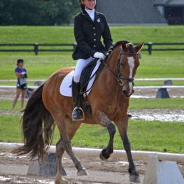 Kalie Beckers, National Dressage Pony Cup, Madoc Mari