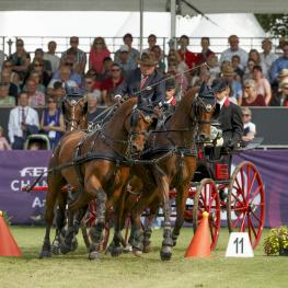 Double world champion Felix Marie Brasseur from Belgium won the cones phase of the FEI European Driving Championships for Four-in-Hand at Aachen (GER). The final marathon phase tomorrow (22 August) will decide the European individual and team champions. (FEI/Dirk Caremans)