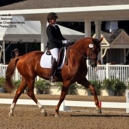 Brooke Voldbaek and Sonnenberg Farm's mare Generosa S 4-year-old Reserve Champion at the Markel/USEF National Young Horse Championships