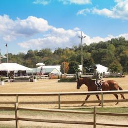 Capital Challenge Horse Show begins tomorrow Satuday, September 26 and continues through Sunday, October 4 at Prince George's Equestrian Center