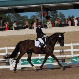 National and international dressage competition took place during the Heart of the Horse Gala, showcasing musical freestyles.