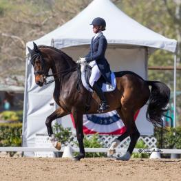 Legolas 92 and Dawn White-O'Connor took both the CDI Grand Prix and Grand Prix Special titles at Dressage Affaire CDI3*/1*/Y/J/U25/AM. (Photo: Terri Miller)