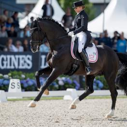 Sezuan, Longines, World Breeding Dressage Championships, Ermelo