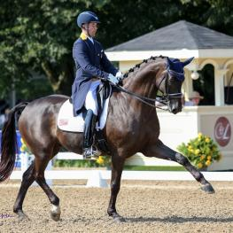 Endel Ots earned the Reserve Champion title in the Developing Prix St. Georges aboard Lucky Strike at the Markel/United States Equestrian Federation (USEF) Young and Developing Dressage Horse National Championships at the Lamplight Equestrian Center in Wayne, Illinois