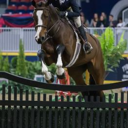 Erynn Ballard of Tottenham, ON, and Enchanted won the $25,000 Knightwood Hunter Derby on Tuesday, November 7, at the Royal Horse Show in Toronto, ON.