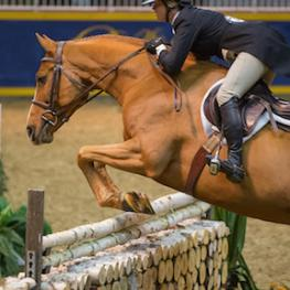Erynn Ballard of Tottenham, ON, and Valentino Now, owned by MVB Group, won the $15,000 Braeburn Farms Hunter Derby at the 2015 Royal Horse Show®