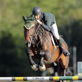 Gavin Moylan and Pernod on their way to a $30,000 HITS Grand Prix win.