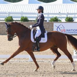 Heather Blitz and Praestemarkens Quatero (Photo: Emma Miller/PS Dressage)