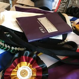 Olivia LaGoy Weltz Aachen Ribbons and Passport