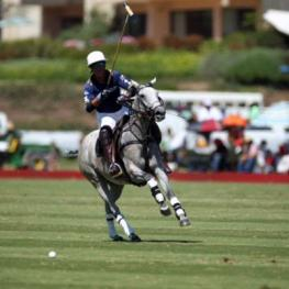 John Muse, Santa Barbara Polo Club president.