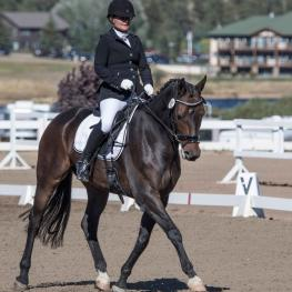 Julie Forman and her Hanoverian gelding Prince Berimba will look to leave the sidelines and get into the ring at this year's US Dressage Finals by competing at this week's Great American/USDF Region 5 Championships.
