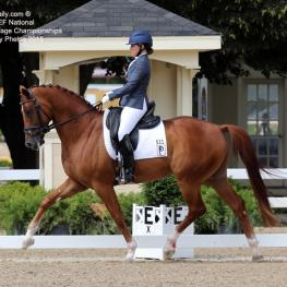 Katie Riley and Don Cesar at  the Markel/USEF Young Horse Championships 2015