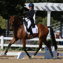 Katie Riley and Toy Story the Markel/USEF Developing Horse Championships