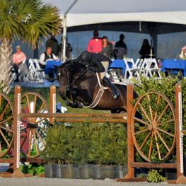 Kelley Farmer and Mindful on their way to a $100,000 USHJA International Hunter Derby win.