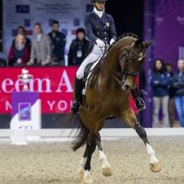 Laura Graves (USA) rides Verdades in The FEI World Cup™Dressage Final ll, Grand Prix Freestyle, April 1 2017