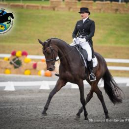 Leader in the CCI*** Marilyn Little and RF Scandalous.