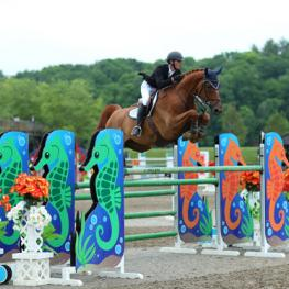 Michael Hughes and Sans Soucis Z on their way to a $75,000 Horseware Ireland Grand Prix win.