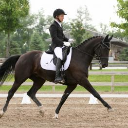 Mike Suchanel and Fighting Chance L, a Hanoverian gelding (First Dance-EM Helia, Hohenstein)