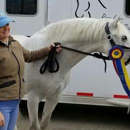 Champion Pony winner Melissa Mulchahey and her stallion Petit Marc Aurel celebrate at an NDPC Partner Show in California.
