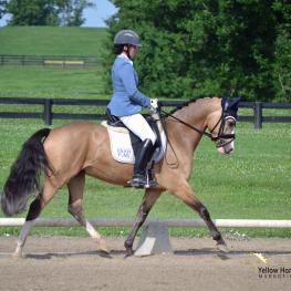 Lauren Chumley, Nikolas, National Dressage Pony Cup Five-Year-Old Futurity