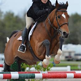 Brennan and Japan fly over a jump in the $7,770 Hester Equestrian, LLC Jumper Classic on their way to the winner's circle