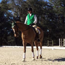 Ready For April - 2005 Thoroughbred Gelding
