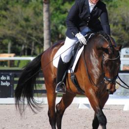Reese Koffler-Stanfield and 6-year-old KWPN Elancourt - Markel/USEF National Dressage Young Horse Championships